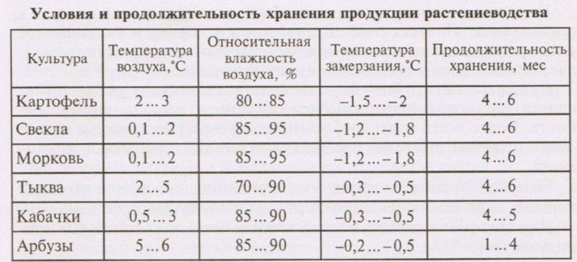 kak-hranit-sveklu-i-morkov-zimoj-v-domashnih-usloviyah foto122332
