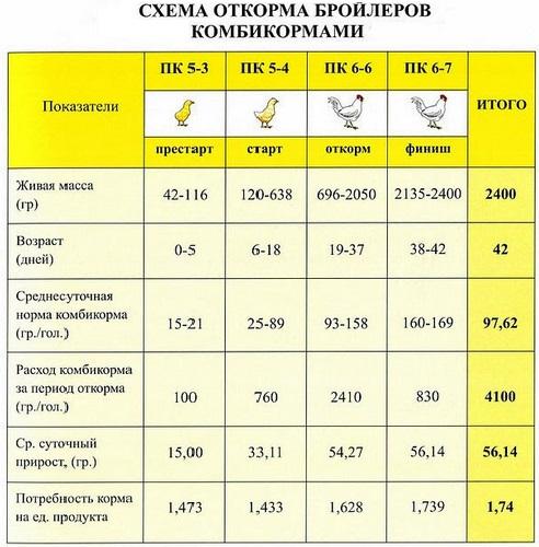 vyrashhivanie-brojlerov-v-domashnih-usloviyah-na-myaso-v-korotkie-sroki foto152454